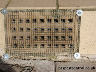Mesh fitted to stop mice entering airbricks.